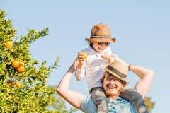 Il padre felice con il suo giovane figlio si diverte sull'agrume fotografie stock