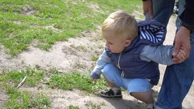 Il padre mostra a suo figlio una formica in un giorno soleggiato del parco stock footage