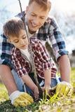 Il padre radiante insegna al figlio a come piantare gli alberi Fotografia Stock