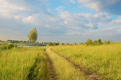 Il paesaggio affascinante con il mezzo della strada e dell'albero del campo Fotografia Stock Libera da Diritti