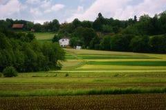 Il paesaggio alpino rurale con il villaggio sloveno in valle vicino ha sanguinato il lago al giorno soleggiato della molla sloven Immagine Stock Libera da Diritti