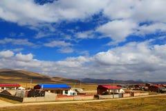Il paesaggio autunnale del plateau del Tibet - di Qinghai Fotografia Stock Libera da Diritti