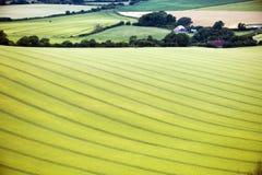 Il paesaggio d'agricoltura al segnale di Firle in Sussex orientale, Inghilterra fotografie stock libere da diritti