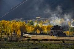 Il paesaggio del atumn del plateau di Xinduqiao Fotografie Stock Libere da Diritti