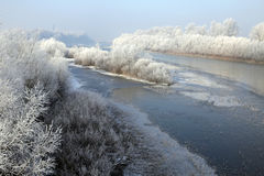 Il paesaggio del fiume con la brina morbida sugli alberi Immagini Stock