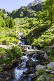 Il paesaggio del fiume della montagna delle alte montagne su una chiara estate, giorno soleggiato. fotografia stock libera da diritti