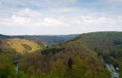 Il paesaggio del fiume in foresta di estate un giorno nebbioso e caldo Fotografia Stock