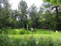 Il paesaggio del parco di Pavlovsk Immagine Stock