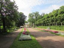 Il paesaggio del parco di Pavlovsk Immagini Stock Libere da Diritti