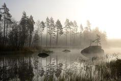 Il paesaggio dell'autunno nebbioso Fotografie Stock Libere da Diritti