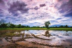 Il paesaggio dell'azienda agricola del ` s dell'agricoltore nella sera Fotografia Stock