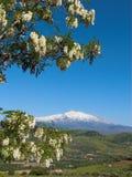 Il paesaggio dell'Etna del vulcano Immagini Stock Libere da Diritti