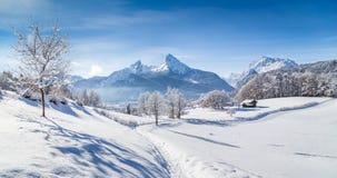 Il paesaggio dell'inverno con gli alberi e la montagna completa nelle alpi Immagine Stock