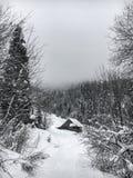 Il paesaggio dell'inverno nella foresta di conifere ha abbandonato la vecchia casa di legno, la capanna del ` s del silvicoltore  Immagine Stock Libera da Diritti