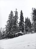 Il paesaggio dell'inverno nella foresta di conifere ha abbandonato la vecchia casa di legno, la capanna del ` s del silvicoltore  Immagini Stock Libere da Diritti