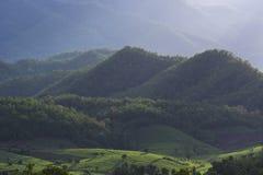 Il paesaggio della casa a terrazze verde allineata del giacimento e dell'agricoltore del riso dietro la montagna con ombra si acc Fotografia Stock