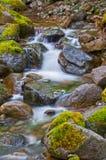 Il paesaggio della cascata circola sulle rocce coperte muschio con mosso Fotografie Stock