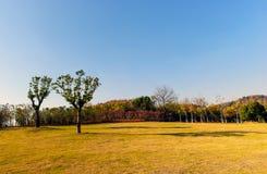 Il paesaggio della città Fotografie Stock