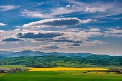 Il paesaggio della molla naturale con il raccolto giallo luminoso variopinto di brassica napus del seme di ravizzone ha archivato immagini stock libere da diritti