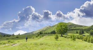 Il paesaggio della montagna con la viandante e la montagna pascolano nel foregr immagini stock libere da diritti