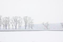 Il paesaggio della neve Immagini Stock Libere da Diritti