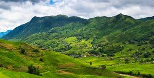 Il paesaggio della valle verde e gli strati delle risaie in Sapa, rivaleggiano Fotografie Stock