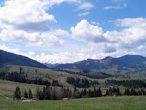 Il paesaggio delle montagne carpatiche Fotografia Stock Libera da Diritti