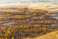 Il paesaggio delle montagne di Altai, in autunno, la Siberia, Russia Fotografie Stock