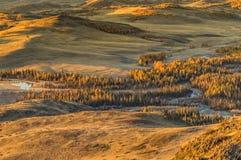 Il paesaggio delle montagne di Altai, in autunno, la Siberia, Russia Fotografia Stock Libera da Diritti