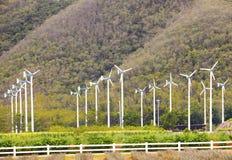 Il paesaggio delle turbine del mulino a vento di eco smazza nell'azienda agricola dell'agricoltura per Immagine Stock Libera da Diritti
