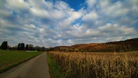 Il paesaggio di autunno con le grande si appanna il cielo Fotografie Stock Libere da Diritti