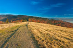Il paesaggio di autunno della montagna Immagini Stock