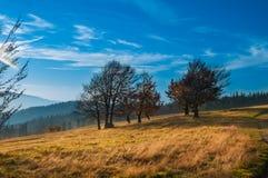 Il paesaggio di autunno della montagna in Beskidy Fotografie Stock