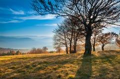 Il paesaggio di autunno della montagna in Beskidy, Polonia Fotografie Stock Libere da Diritti