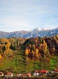 Il paesaggio di autunno della montagna con la foresta variopinta Immagini Stock