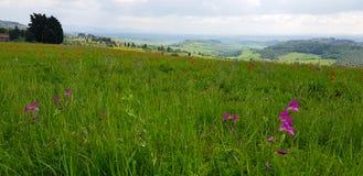 Il paesaggio di Chianti nelle colline toscane fotografia stock libera da diritti