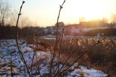 Il paesaggio di inverno dal fiume Immagine Stock Libera da Diritti