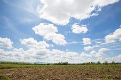 Il paesaggio di potrebbe in cielo blu con la montagna e sistema la vista alla luce del sole di pomeriggio immagini stock