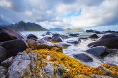 Il paesaggio di stordimento di lofoten le isole Fiordo con i lati di pietra sotto il cielo nuvoloso immagini stock