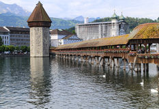 Il paesaggio in erba medica del lago, Svizzera Fotografie Stock