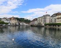 Il paesaggio in erba medica del lago, Svizzera Fotografia Stock