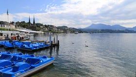 Il paesaggio in erba medica del lago, Svizzera Immagine Stock