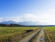 Il paesaggio idilliaco nelle alpi con i prati verdi freschi e la fioritura fiorisce Fotografie Stock