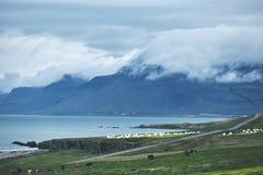 Il paesaggio islandese austero con il campo nella priorità alta e nelle montagne ed i fiordi nei precedenti Immagini Stock