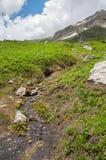 Il paesaggio magnifico della montagna della riserva naturale di Caucaso fotografie stock