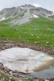 Il paesaggio magnifico della montagna della riserva naturale di Caucaso Immagine Stock
