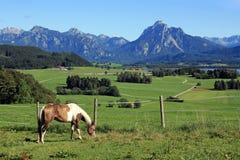 Il paesaggio meraviglioso della montagna della Baviera Immagini Stock