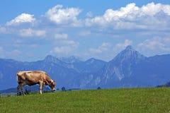 Il paesaggio meraviglioso della montagna della Baviera Immagini Stock Libere da Diritti
