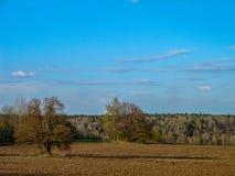 Il paesaggio nei campi della regione di Kaluga in Russia Fotografie Stock Libere da Diritti