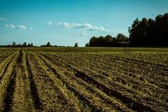 Il paesaggio nei campi della regione di Kaluga in Russia Fotografie Stock